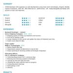 Web Developer Resume Example 3