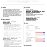 Web Developer Resume Sample 2