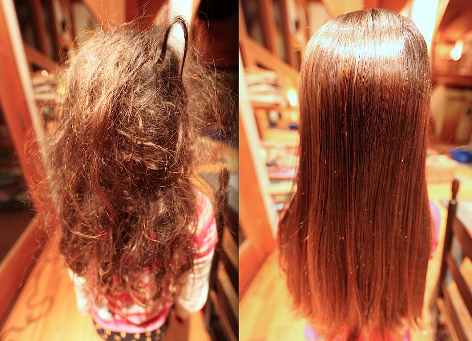 Reasons for detangled matted hair | Work-Shop-PDX