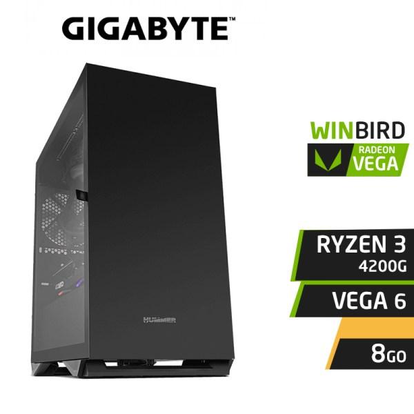 WINBIRD RYZEN 3 4200G 8GB RX VEGA 6 SSD 120Go 1To