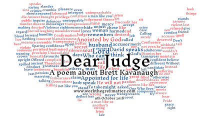 Wordcloud of words in the poem Dear Judge with blue and red text in the shape of the USA