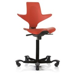 Saddle Seat Chairs Reviews Potty Or Chair Hag Capisco Puls Ergonomic Review