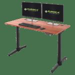 Eureka I1 Standing Desk Review