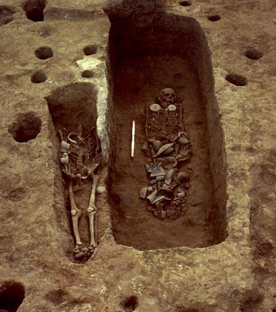 Charles Higham: A prehistoric mystery