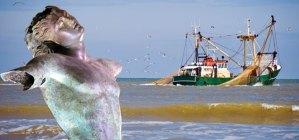 Trawler-new