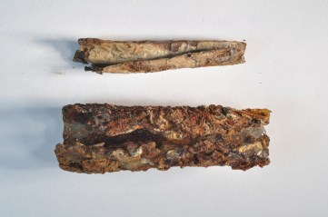 A scroll and the lead container in which it was kept