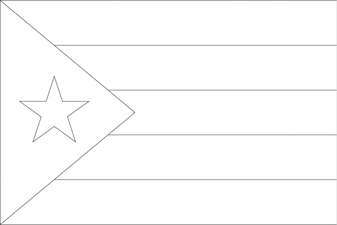 Beautiful Bayamn Municipio Puerto Rico Outline Puerto Rico Flag