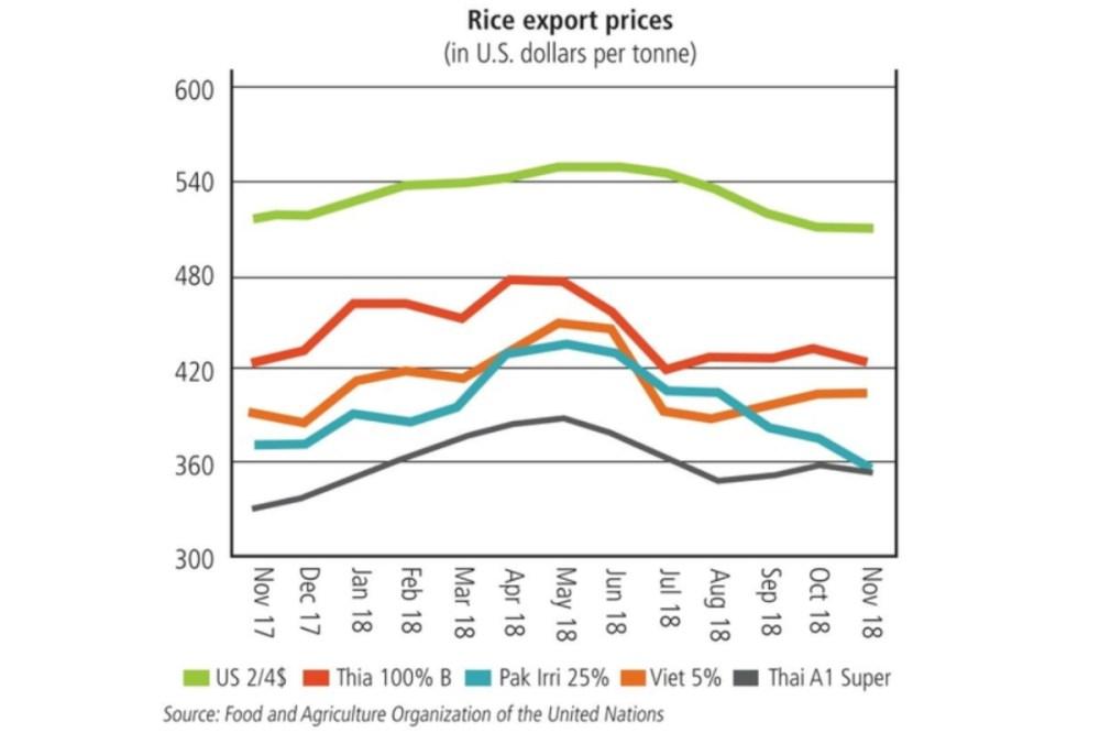 medium resolution of rice exports