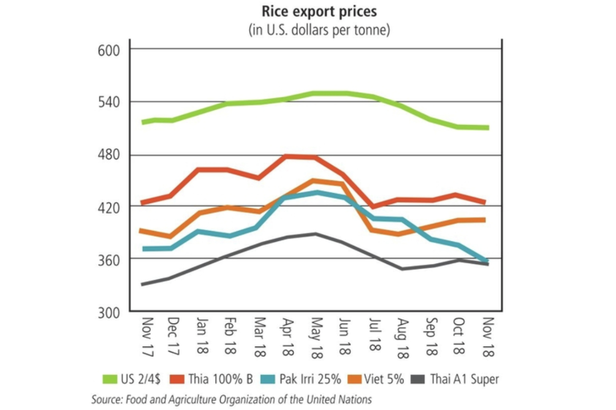 hight resolution of rice exports