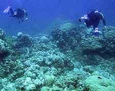 Mauritius Scuba Diving Mauritius Africa
