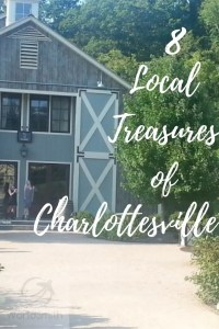 local-treasures-charlottesville-pin