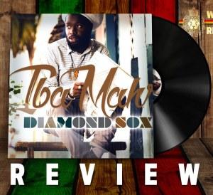 Diamond Sox Review