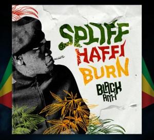 Spliff Haffi Burn