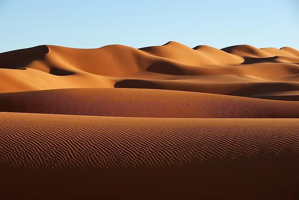 Saharah Desert Animals