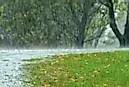How is Acid Rain Formed? - WorldAtlas.com