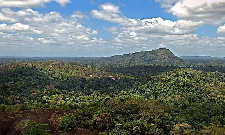 640px-amazon-jungle-from-above