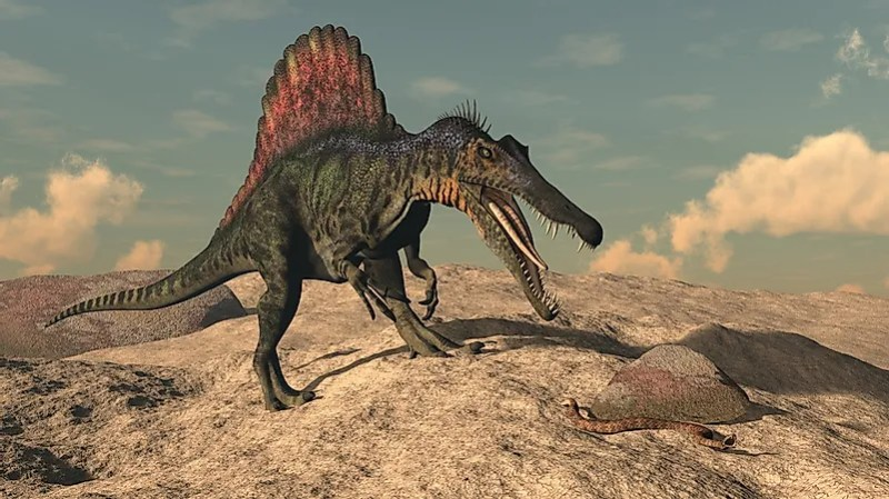 Spino, How Famous Dinosaurs Really Looked Like