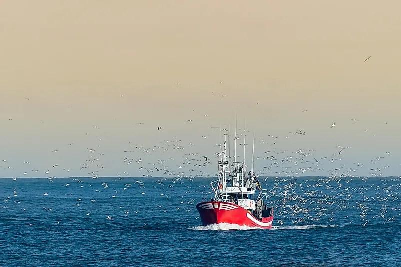 # 5 Trabalhadores da pesca