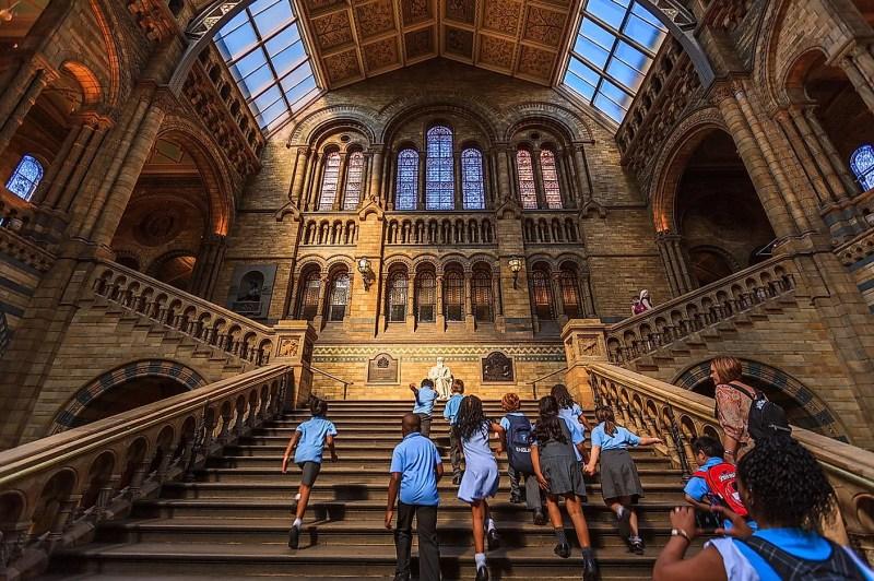 Natural History Museum UK.  Resim kredisi: Chiugoran / Wikimedia.org