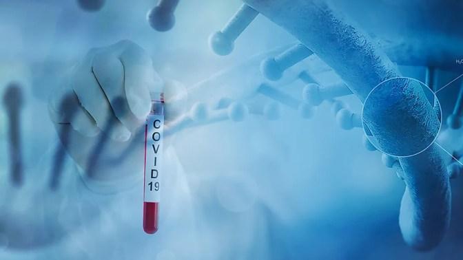 Depois de entrar em nossos corpos, o vírus começa a infectar nossas células, começando pelas da garganta e pulmões.