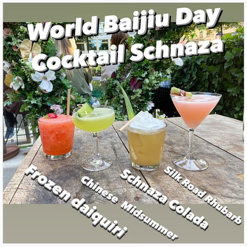 world-baijiu-day-2021-wrap-stockholm-lu-spirits-surfers-i-think