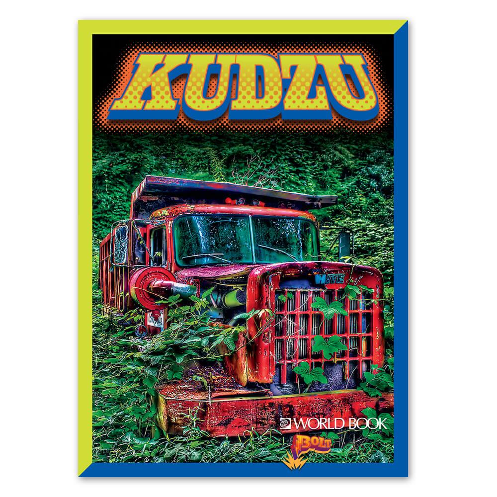 hight resolution of kudzu plant diagram