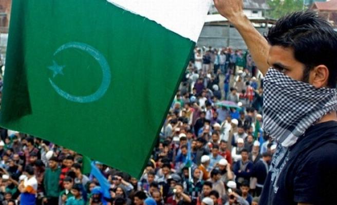 pakistan flags waved bjp