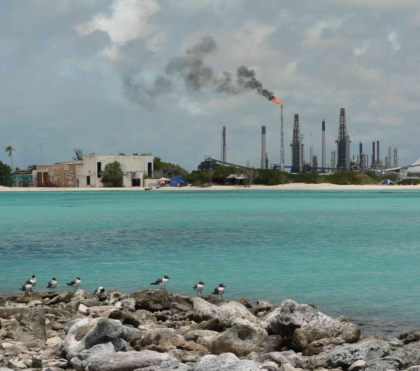 Caribbean-fuel-production-and-usage-covers-a-broad-spectrum-©David-Stanley