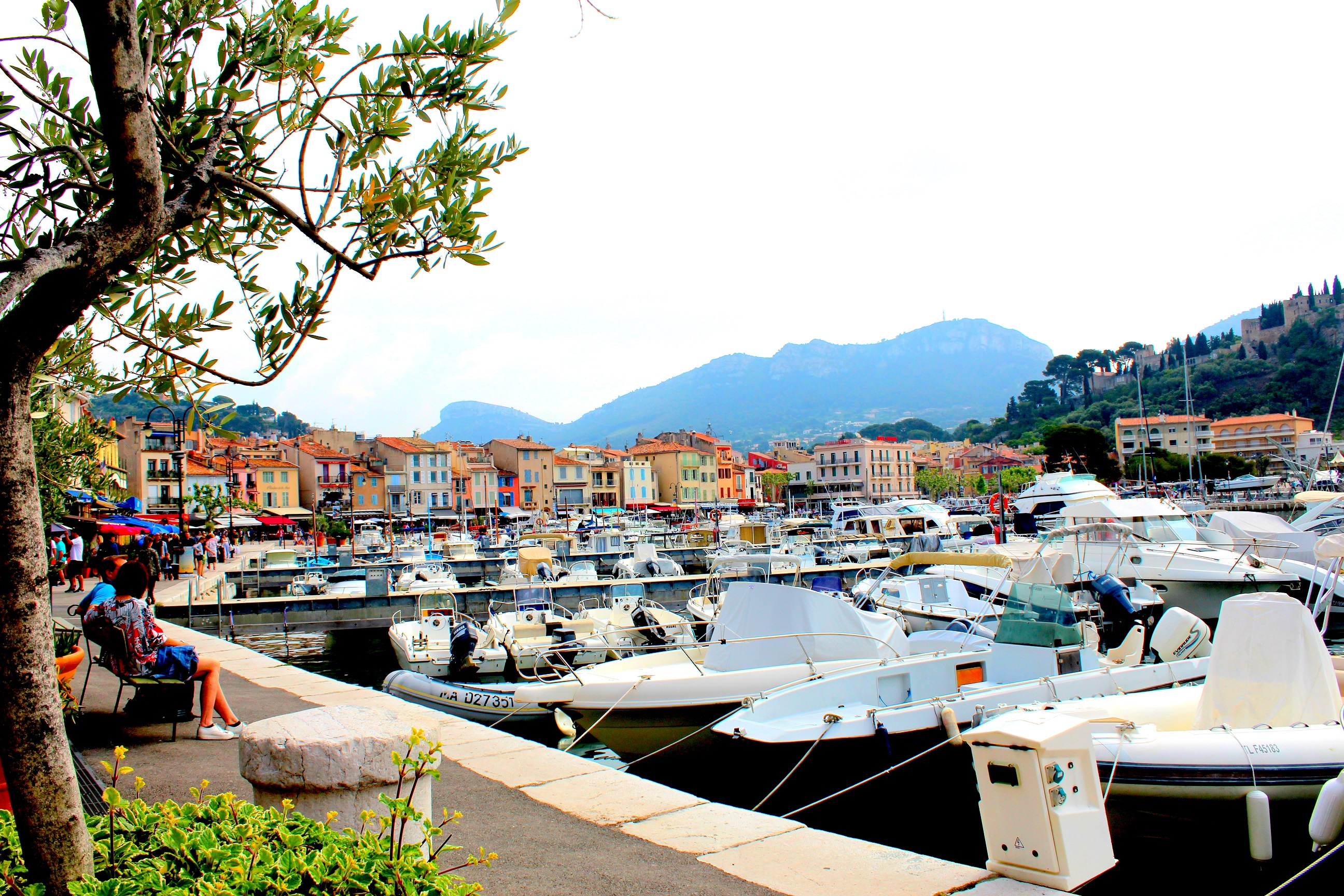 Cassis the port