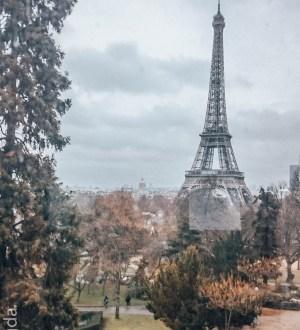 Widok na Wieżę Eiffla z Muzeum Człowieka