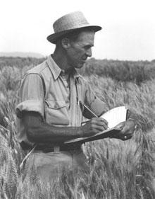 Norman Borlaug