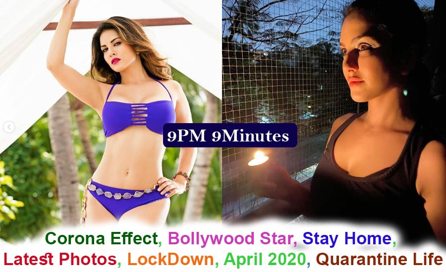Live Sunny Leone Stay Home News - Corona Effect Bollywood Actress Self-isolate April 2020 LockDown Indian