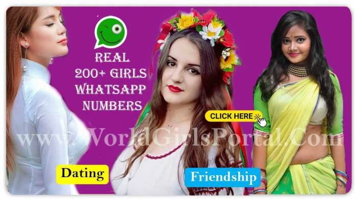 200+ Girls WhatsApp Numbers Collection For Friendship - Calling - Chatting World Girls Portal