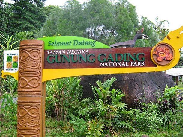 Taman Negara Gunung Gading Image