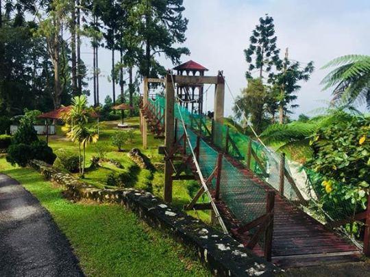 Bukit Larut Taiping Image