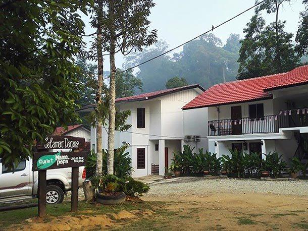 Chalet Mamapapa Janda Baik - Main Image