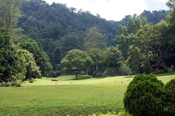 Taman Botani Penang
