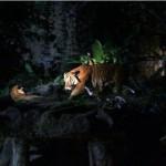 melaka-zoo-night-safari-04