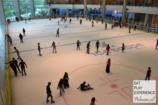 icescape-ice-rink-1