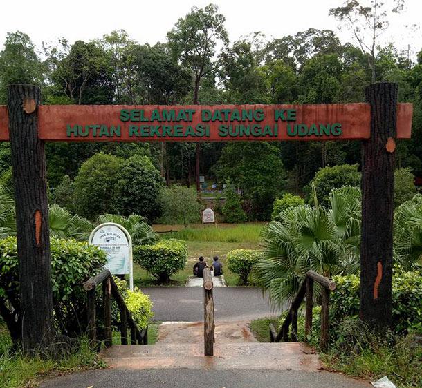 Hutan-Rekreasi-Sungai-Udang-melaka