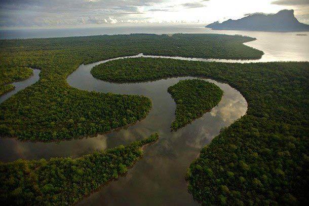 Kuching Wetlands National Park Main Image