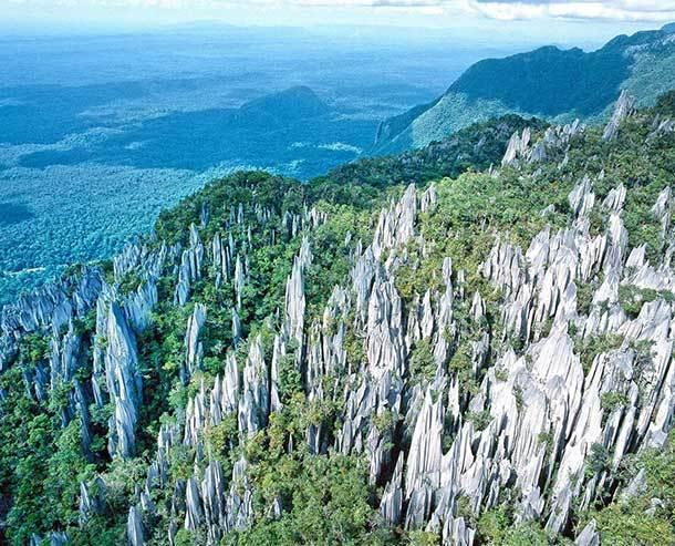Gunung Mulu National Park Miri