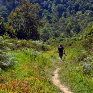 visit-2Bsarawak-2Bmalaysia-2Bborneo-2Bbario-2Bfood-2Bfestival-2B2014-2Bmisc-2BmikhaiLLU-2B-10-