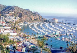 World In Four Days   A Travel & Lifestyle Blog: Long Beach Visitors Guide