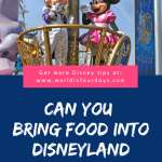 Can You Bring Food Into Disneyland