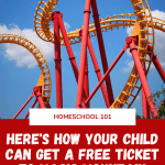 Looking for ways to encourage your child to read? How about free tickets to Magic Mountain. Magic Mountain is offering free tickets to Magic Mountain for any child (public school or homeschool) via the Six Flags Read to Succeed program who submits a reading long. Here's how to get your tickets. #themepark #homeschool #unschool #homeschooltips #magicmountain