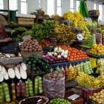 How to Eat Adventurously in Ecuador