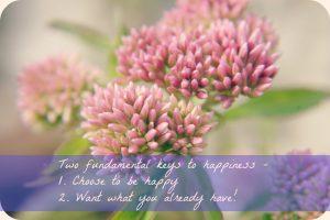 2 keys to happiness