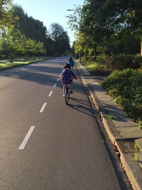 NETHERLANDS: Get Right Back on The Bicycle