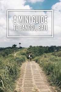 A Mini Guide to Canggu, Bali www.worldofawanderer.com